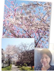 th_スクリーンショット 2015-04-01 21.21.58